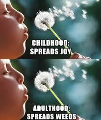 childhood13